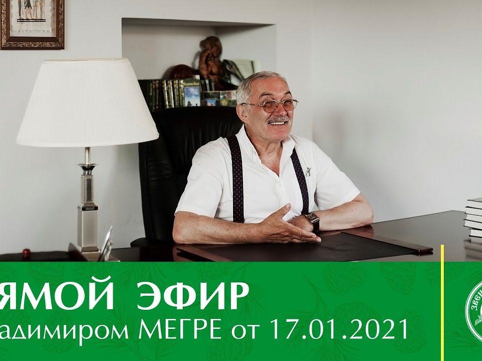 Vladimir-Megre